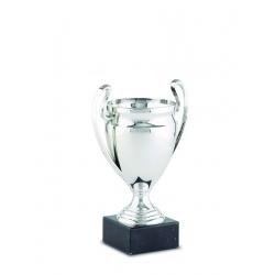 Copa de Participación 20-2210