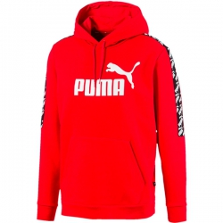 Sudadera Puma Amplified
